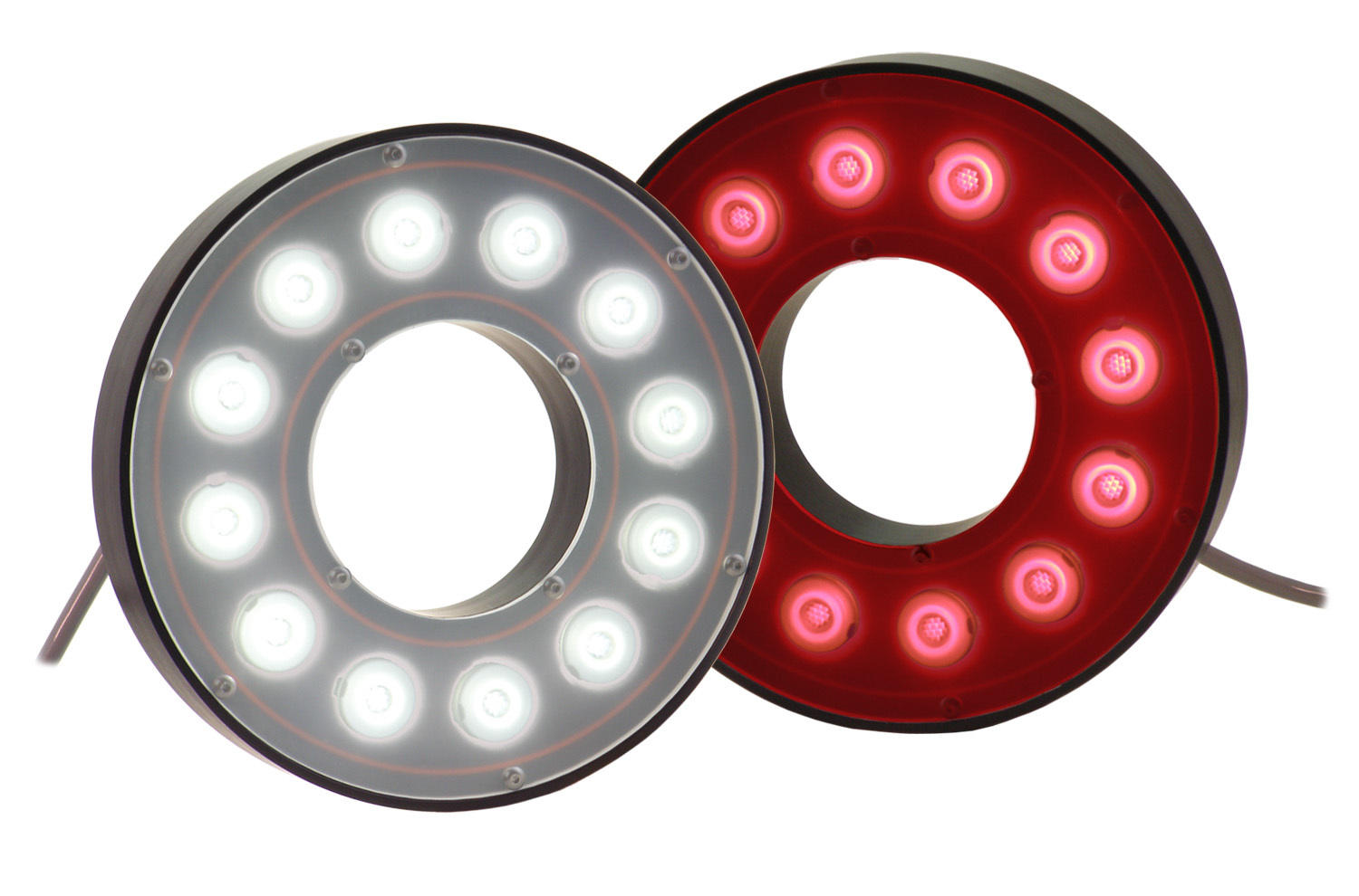 RL113 High Performance Bright Field Ring Light